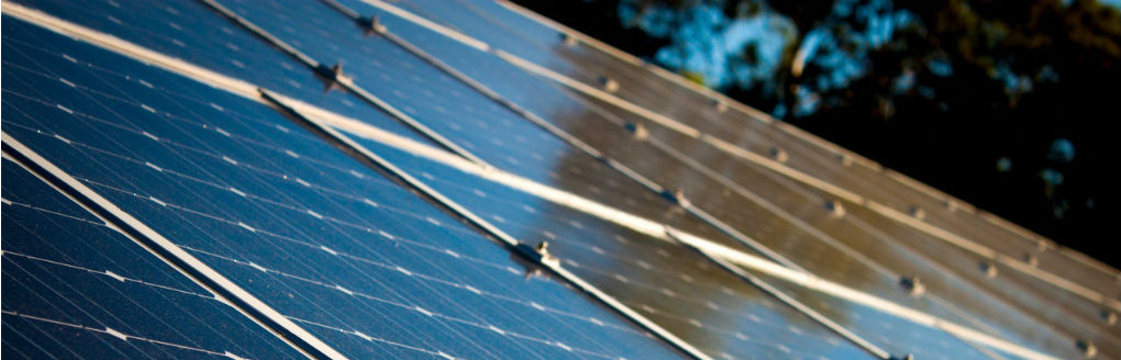 Commissie Leefomgeving over duurzaamheid en energietransitie