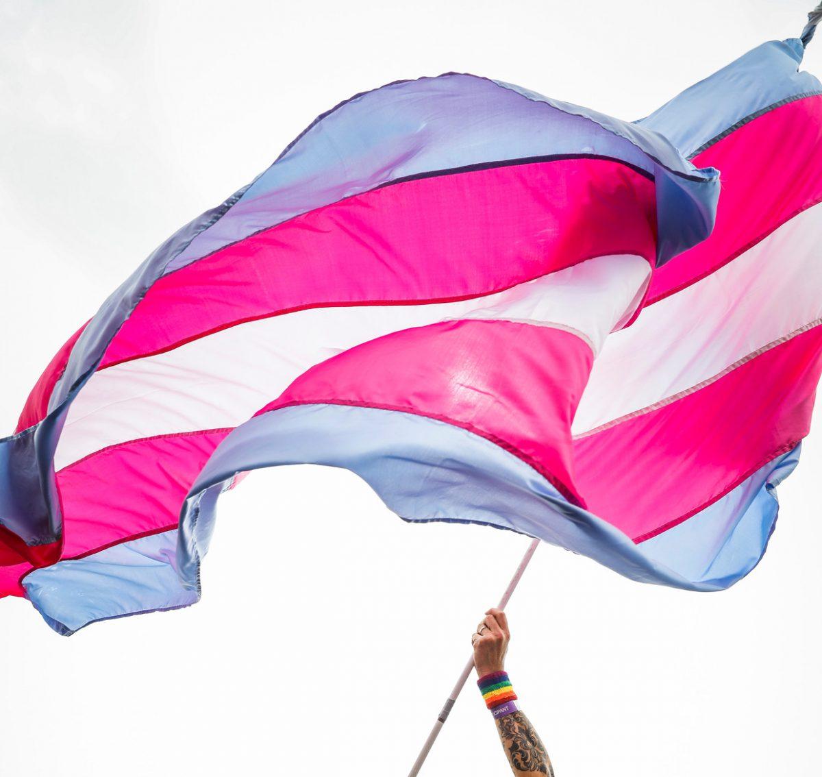 Internationale dag van de Transgenderrechten